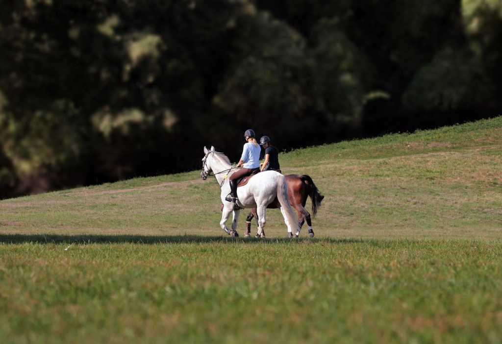 Rutas a caballo Córdoba